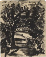 [Tree-lined path]