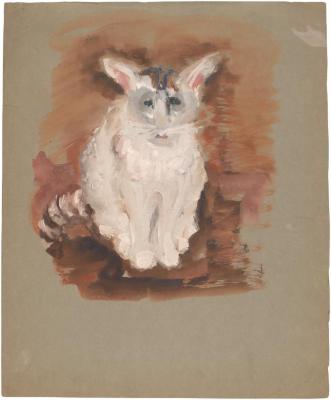 [White cat]