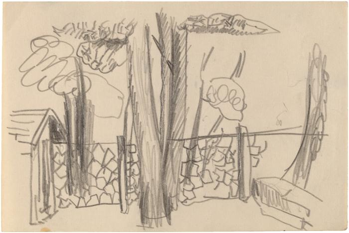 [Outdoor scene with fence and trees]