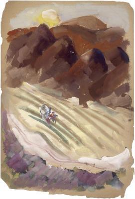 [Agricultural landscape]